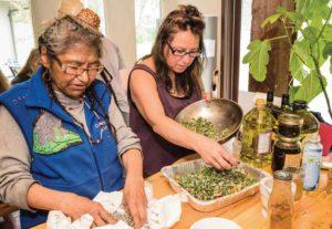 preparing plants for medicine