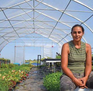 Salish plant nursery targets sustainability