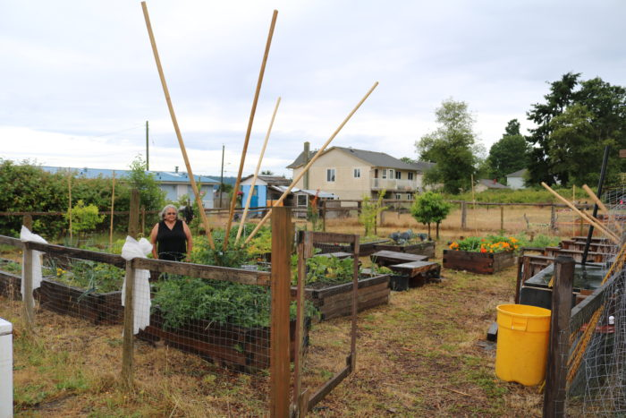 Tla'amin promotes food security with community garden