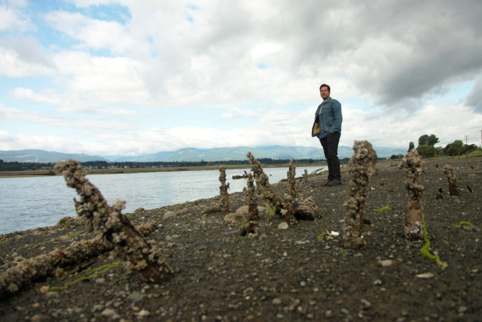 Kus-kus-sum: K'ómoks estuary set to be restored after decades of industrial damage